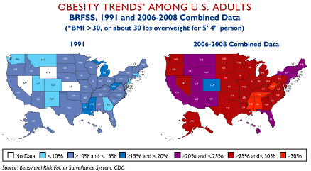 """the route to american obesity"" facts Check out our top free essays on argument essay obesity fast food to help you write your own essay ""the route to american obesity"": facts or."